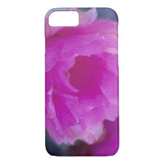 ピンクのハリネズミサボテンの花(Echinocereus iPhone 8/7ケース