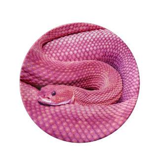 ピンクのバジリスクのガラガラヘビ 磁器プレート