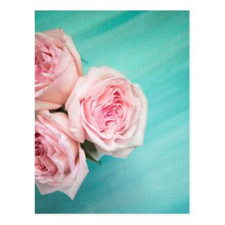 ピンクのバラおよびティール(緑がかった色)の背景 ポストカード