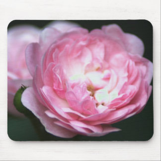 ピンクのバラのマウスパッド! マウスパッド