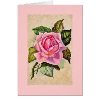 ピンクのバラのメッセージカードLTPK カード