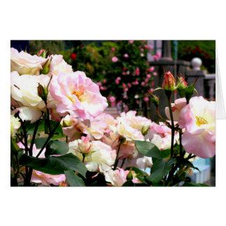 ピンクのバラの写真の挨拶状のパート1 グリーティングカード