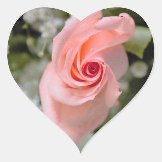 ピンクのバラの写真 ハートシール