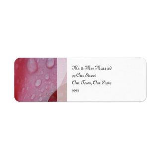 ピンクのバラの花びらの結婚 返信用宛名ラベル