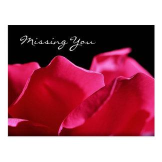 ピンクのバラの花びらを恋しく思います はがき