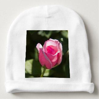 ピンクのバラの芽 ベビービーニー