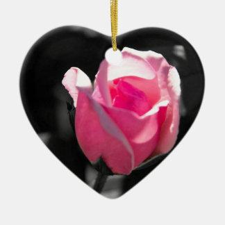 ピンクのバラの芽BW セラミックオーナメント
