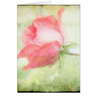 ピンクのバラ カード