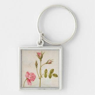 ピンクのバラ、c.1568 キーホルダー