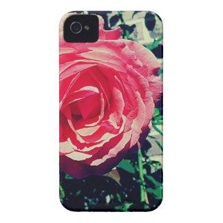 ピンクのバラ Case-Mate iPhone 4 ケース