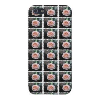 ピンクのバラ iPhone 5 ケース