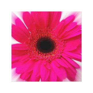 ピンクのフィズ キャンバスプリント
