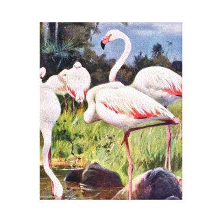 ピンクのフラミンゴのヴィンテージの絵 キャンバスプリント