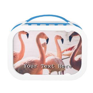 ピンクのフラミンゴの群、鳥の写真撮影 ランチボックス