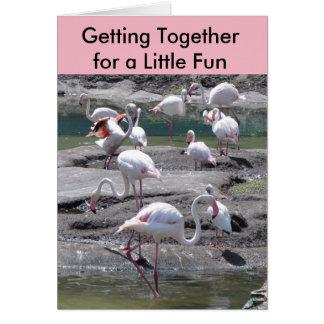 ピンクのフラミンゴの集まり カード