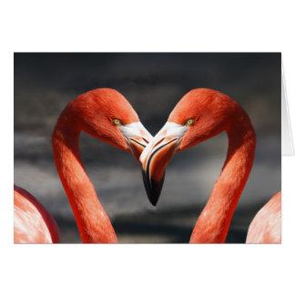 ピンクのフラミンゴ愛挨拶状 カード