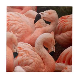 ピンクのフラミンゴ タイル