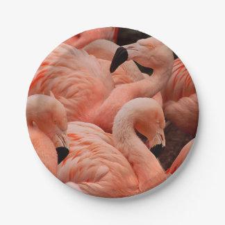 ピンクのフラミンゴ ペーパープレート