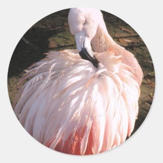 ピンクのフラミンゴ ラウンドシール
