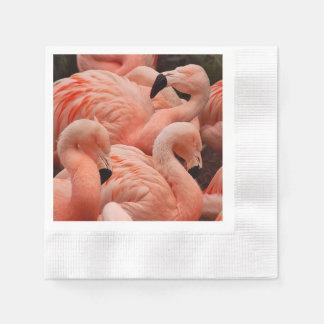 ピンクのフラミンゴ 縁ありカクテルナプキン