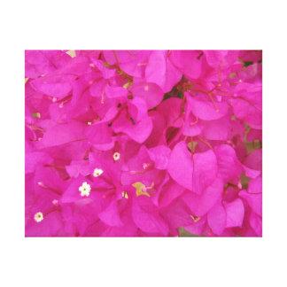 ピンクのブーゲンビリアの花(ギリシャ) キャンバスプリント