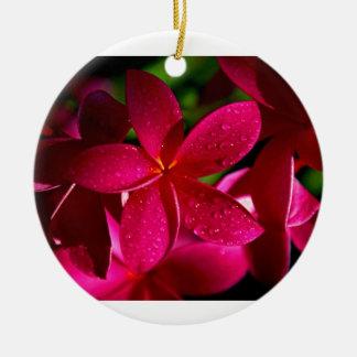 ピンクのプルメリアの花 セラミックオーナメント