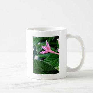 ピンクのペチュニアおよび葉 コーヒーマグカップ