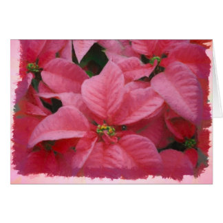 ピンクのポインセチアのクリスマスカード カード