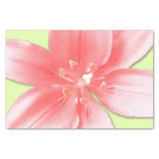 ピンクのワスレグサのティッシュペーパー 薄葉紙