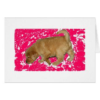 ピンクの子犬 カード