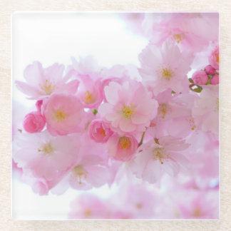ピンクの日本のな桜 ガラスコースター