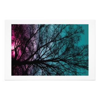 ピンクの日没の木 フォトプリント