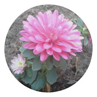 ピンクの星状体の花 消しゴム