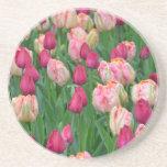 ピンクの春のチューリップの庭 ドリンクコースター