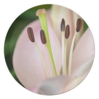 ピンクの春ユリの花 プレート