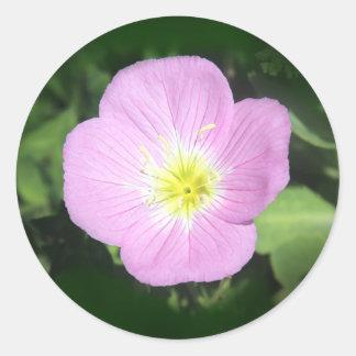 ピンクの月見草の花 ラウンドシール