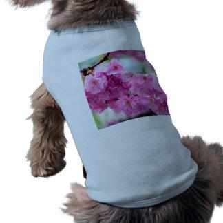 ピンクの桜のさくらんぼ ペット服