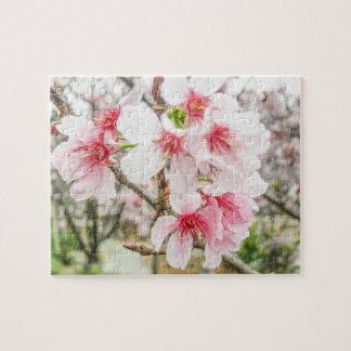 ピンクの桜- ジグソーパズル