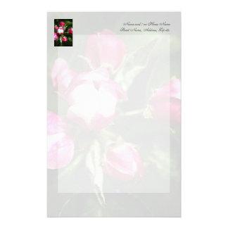 ピンクの桜 便箋