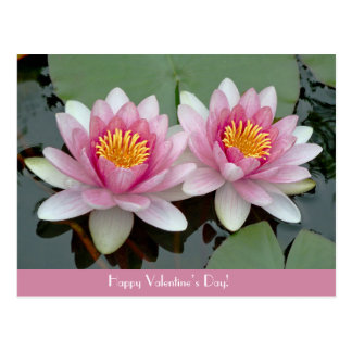 ピンクの浮遊《植物》スイレンのLotusValentiveの日カード 葉書き
