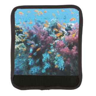 ピンクの珊瑚 ラゲッジ ハンドルラップ