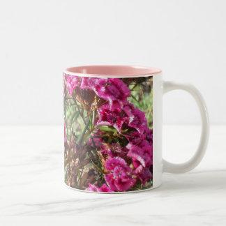 ピンクの甘いウィリアムス ツートーンマグカップ