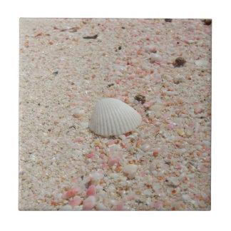 ピンクの砂のビーチの白い貝殻 タイル