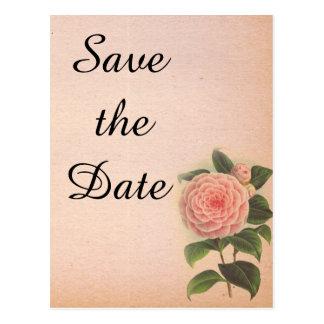 ピンクの素朴な結婚式のセーブ・ザ・デート案内 ポストカード