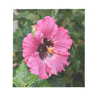 ピンクの紫色のハイビスカスの花 ノートパッド