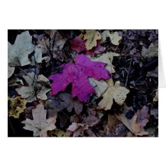 ピンクの群葉の破裂音 カード