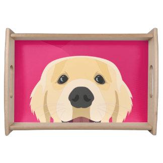 ピンクの背景とのイラストレーション金Retriver トレー