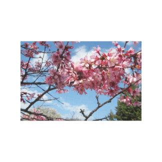 ピンクの花が付いている春の空 キャンバスプリント