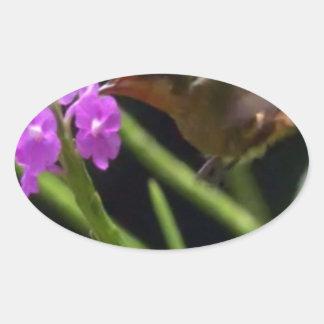 ピンクの花のかわいいハチドリ99上のぶんぶんいう鳥 楕円形シール