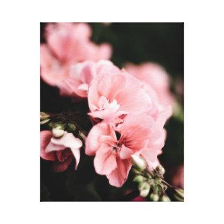 ピンクの花のキャンバス キャンバスプリント